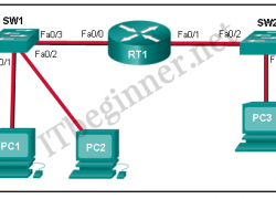 CCNA 1 Introduction to Networks Ver 6.0 – ITN Chapter 5 Test Online