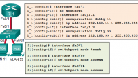 CCNA 3 Scaling Networks Ver 6.0 – ITN Final Test online