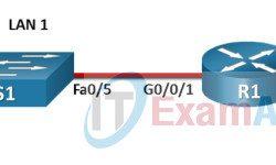 CCNA 1 ITN (Version 7.00) Final PT Skills Assessment (PTSA) Answers