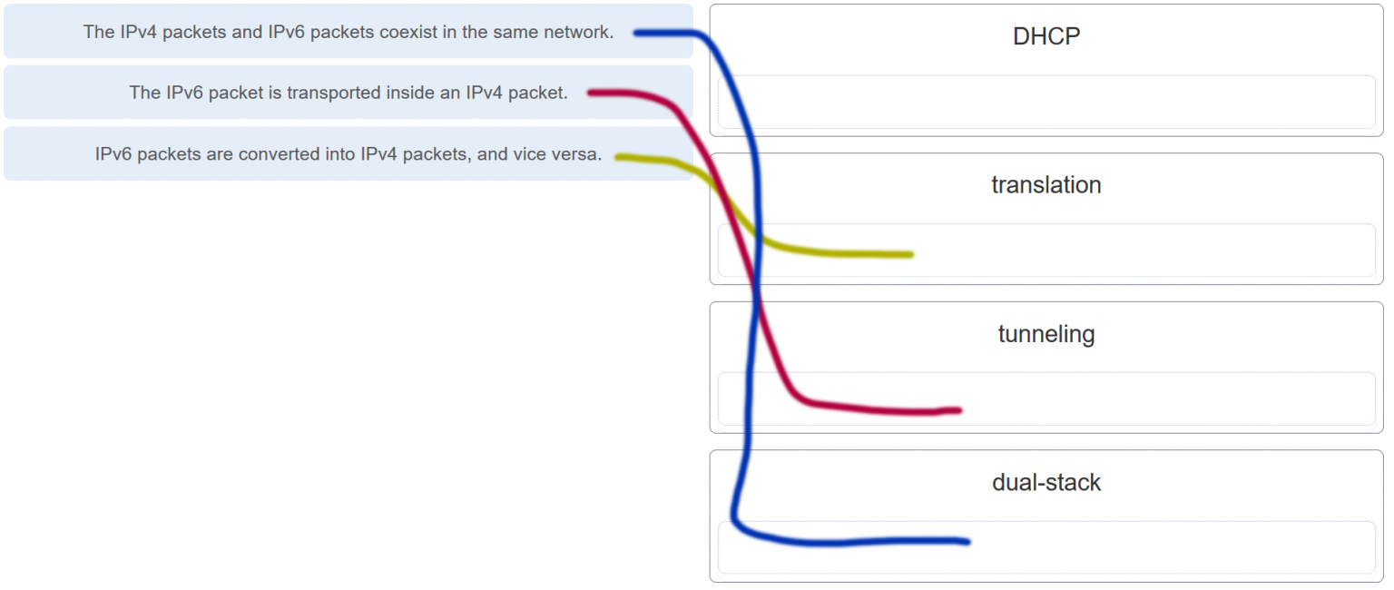 Modules 11 – 13: IP Addressing Exam Answers